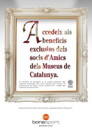 amics del museus de catalunya
